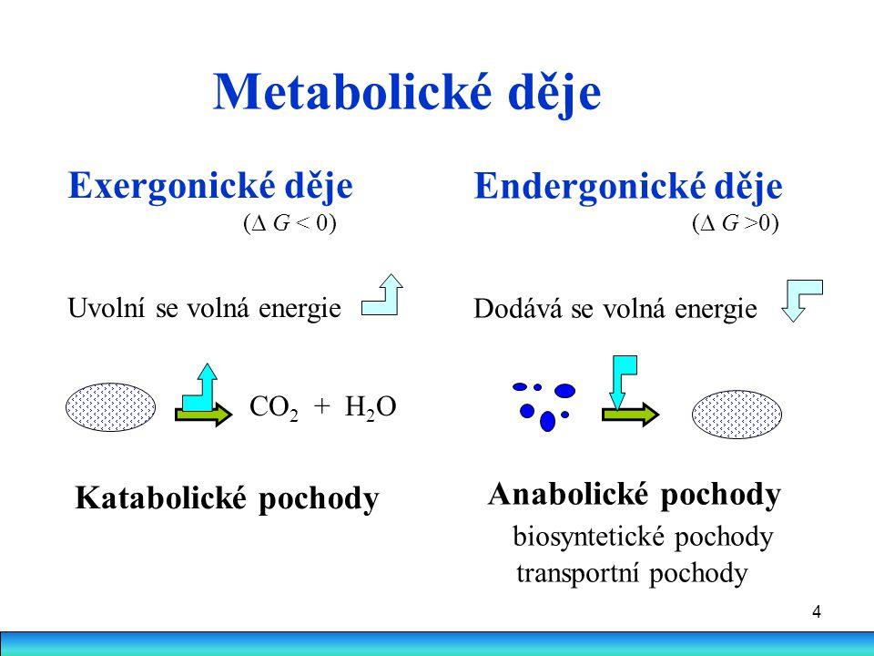 4 Metabolické děje Exergonické děje (  G < 0) Uvolní se volná energie CO 2 + H 2 O Endergonické děje (  G >0) Dodává se volná energie Katabolické po