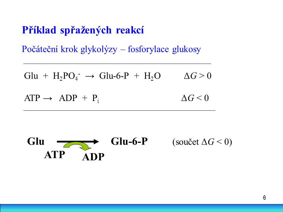 6 Příklad spřažených reakcí Počáteční krok glykolýzy – fosforylace glukosy Glu + H 2 PO 4 - → Glu-6-P + H 2 O ΔG > 0 ATP → ADP + P i ΔG < 0 Glu Glu-6-