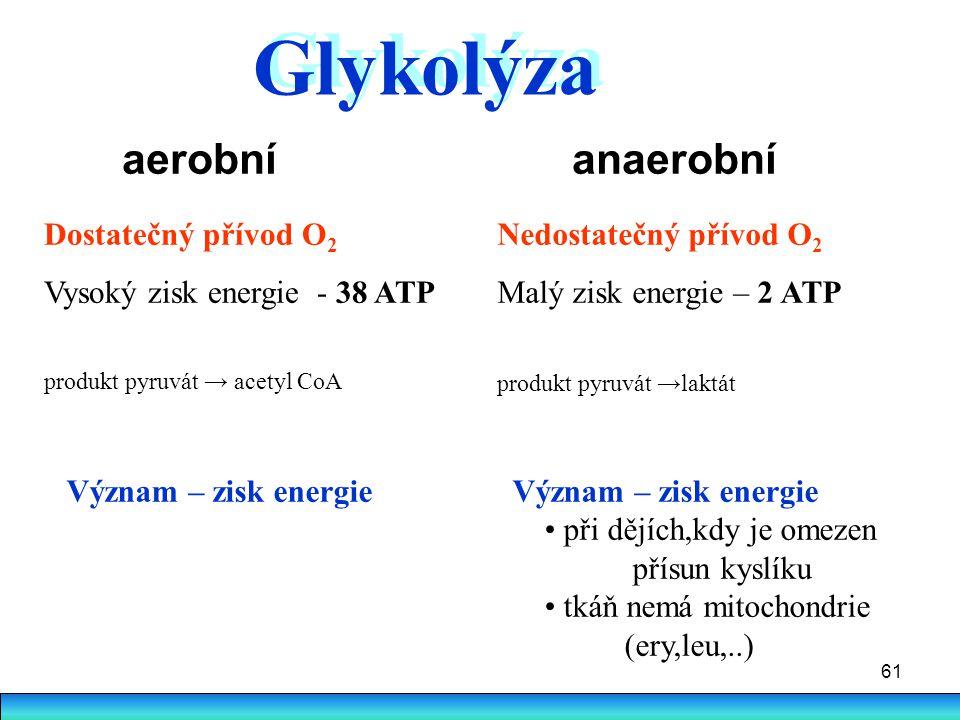 61 aerobní anaerobní Dostatečný přívod O 2 Vysoký zisk energie - 38 ATP produkt pyruvát → acetyl CoA Nedostatečný přívod O 2 Malý zisk energie – 2 ATP