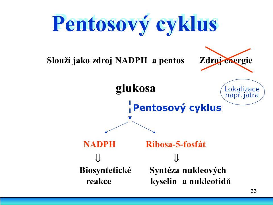 63 glukosa Slouží jako zdroj NADPH a pentos Pentosový cyklus NADPHRibosa-5-fosfát  Biosyntetické Syntéza nukleových reakce kyselin a nukleotidů Lokal