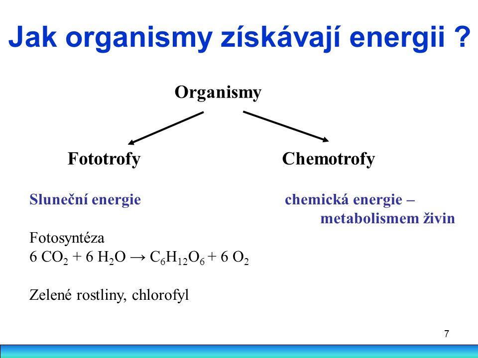 7 Jak organismy získávají energii ? Organismy Fototrofy Chemotrofy Sluneční energie chemická energie – metabolismem živin Fotosyntéza 6 CO 2 + 6 H 2 O