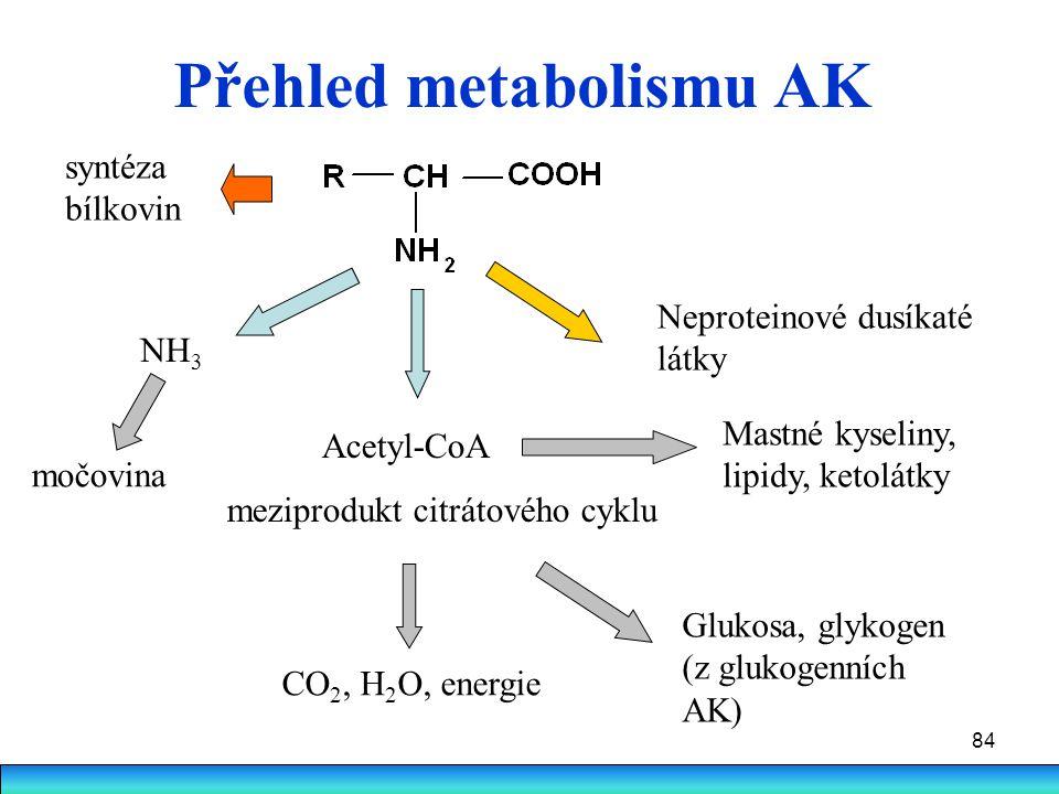 84 Přehled metabolismu AK NH 3 Acetyl-CoA meziprodukt citrátového cyklu CO 2, H 2 O, energie Glukosa, glykogen (z glukogenních AK) Mastné kyseliny, li