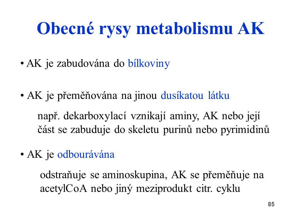 85 Obecné rysy metabolismu AK AK je přeměňována na jinou dusíkatou látku např. dekarboxylací vznikají aminy, AK nebo její část se zabuduje do skeletu