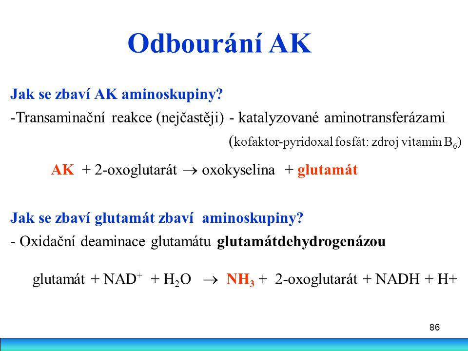 86 Odbourání AK Jak se zbaví AK aminoskupiny? -Transaminační reakce (nejčastěji) - katalyzované aminotransferázami ( kofaktor-pyridoxal fosfát: zdroj