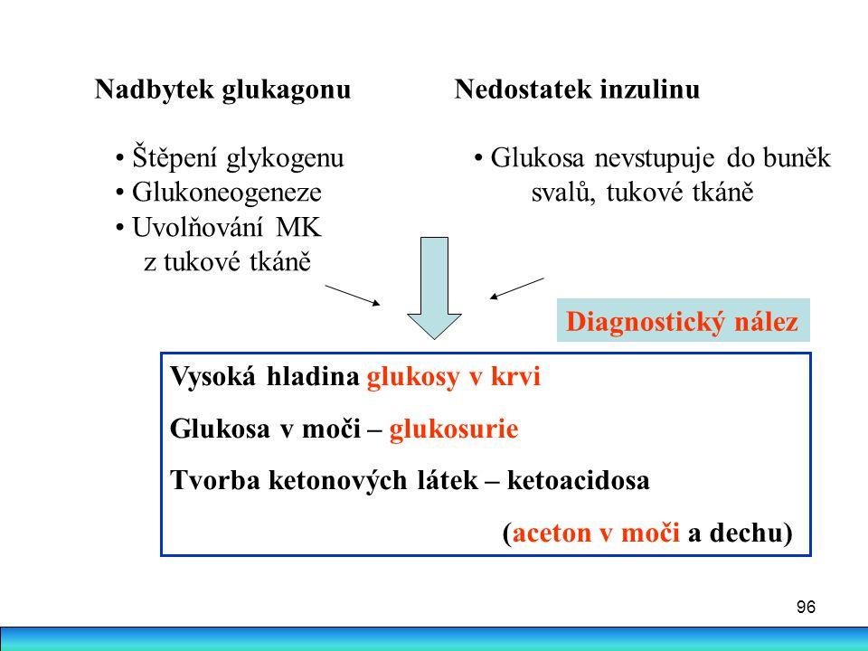 96 Nadbytek glukagonu Nedostatek inzulinu Glukosa nevstupuje do buněk svalů, tukové tkáně Štěpení glykogenu Glukoneogeneze Uvolňování MK z tukové tkán