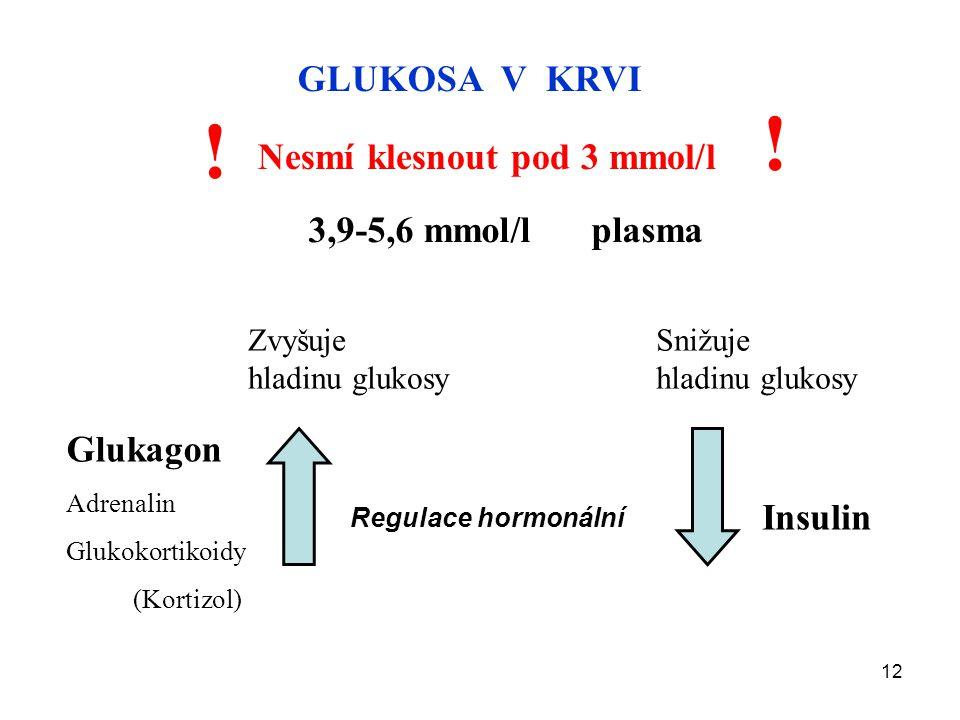 12 GLUKOSA V KRVI Nesmí klesnout pod 3 mmol/l ! ! 3,9-5,6 mmol/l plasma Regulace hormonální Glukagon Adrenalin Glukokortikoidy (Kortizol) Insulin Zvyš