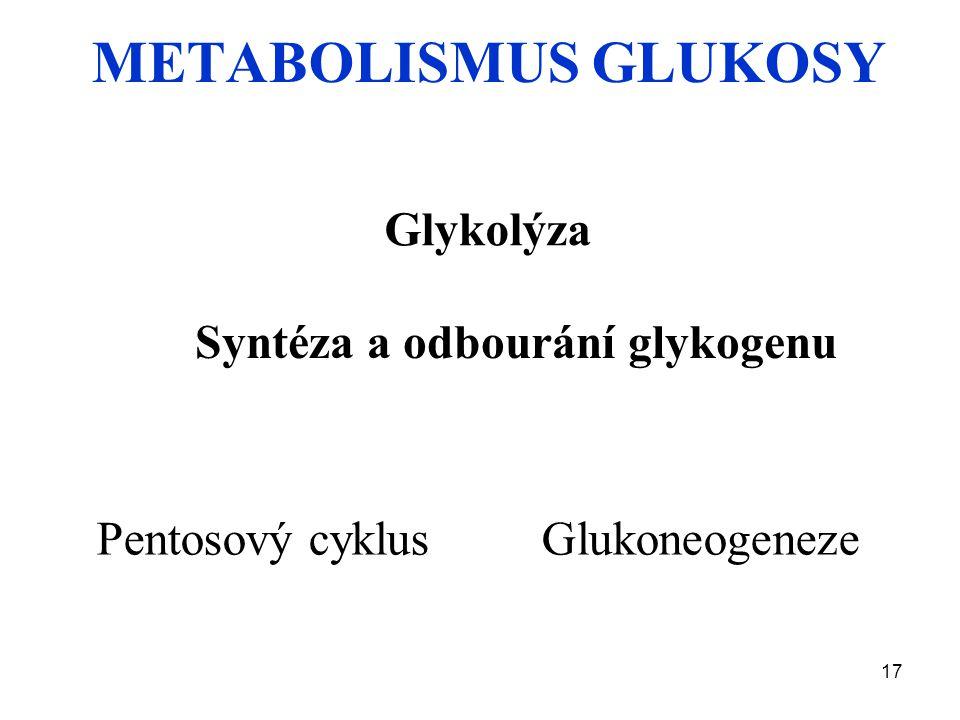 17 METABOLISMUS GLUKOSY Glykolýza Syntéza a odbourání glykogenu Pentosový cyklus Glukoneogeneze