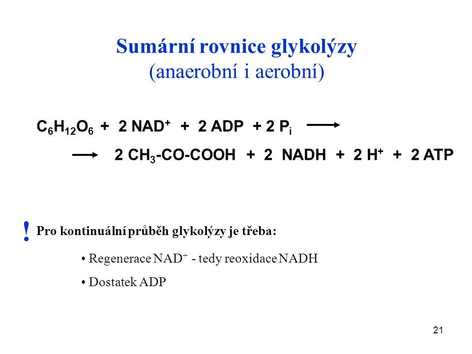 21 Sumární rovnice glykolýzy (anaerobní i aerobní) C 6 H 12 O 6 + 2 NAD + + 2 ADP + 2 P i 2 CH 3 -CO-COOH + 2 NADH + 2 H + + 2 ATP Pro kontinuální průběh glykolýzy je třeba: Regenerace NAD + - tedy reoxidace NADH Dostatek ADP !