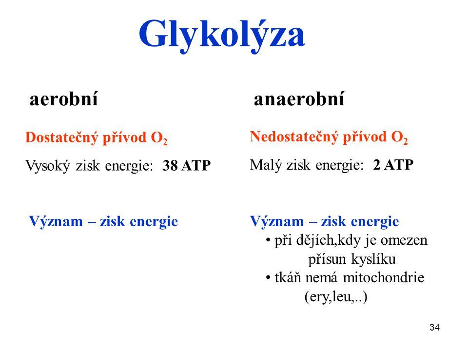 34 aerobní anaerobní Dostatečný přívod O 2 Vysoký zisk energie: 38 ATP Nedostatečný přívod O 2 Malý zisk energie: 2 ATP Význam – zisk energie při dějích,kdy je omezen přísun kyslíku tkáň nemá mitochondrie (ery,leu,..) Význam – zisk energie Glykolýza