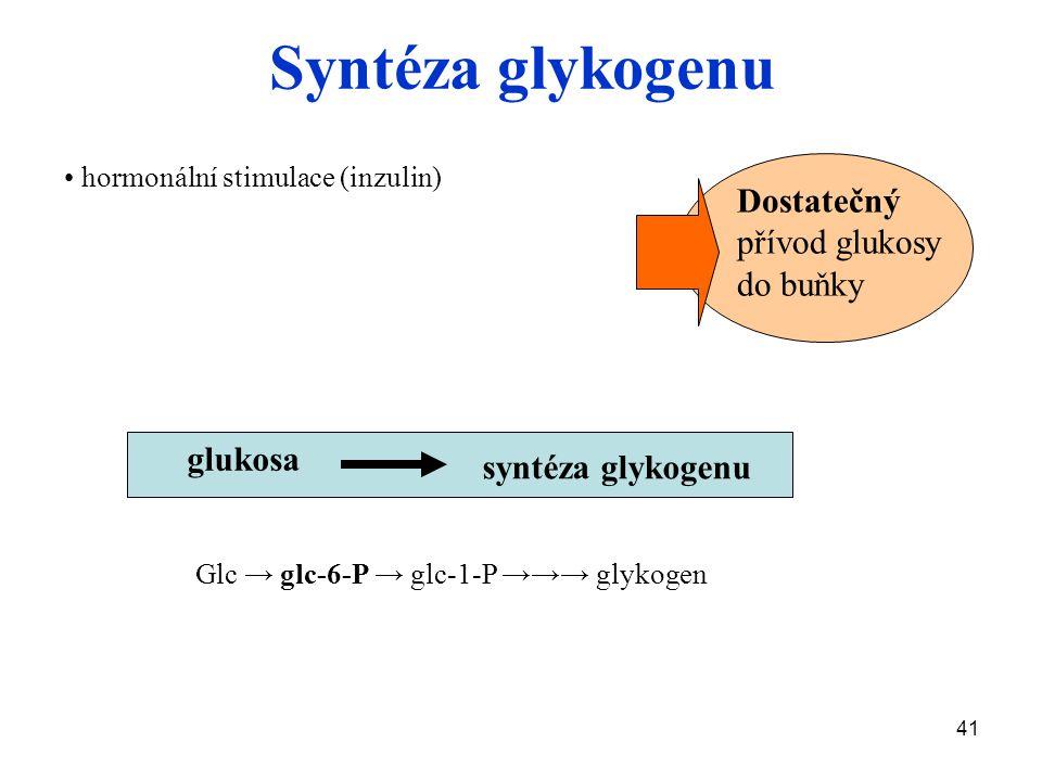 41 Dostatečný přívod glukosy do buňky glukosa Glc → glc-6-P → glc-1-P →→→ glykogen Syntéza glykogenu hormonální stimulace (inzulin) syntéza glykogenu