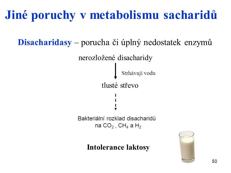50 nerozložené disacharidy tlusté střevo Strhávají vodu Bakteriální rozklad disacharidů na CO 2, CH 4 a H 2 Intolerance laktosy Disacharidasy – porucha či úplný nedostatek enzymů Jiné poruchy v metabolismu sacharidů