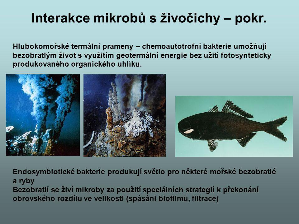 Interakce mikrobů s živočichy – pokr.