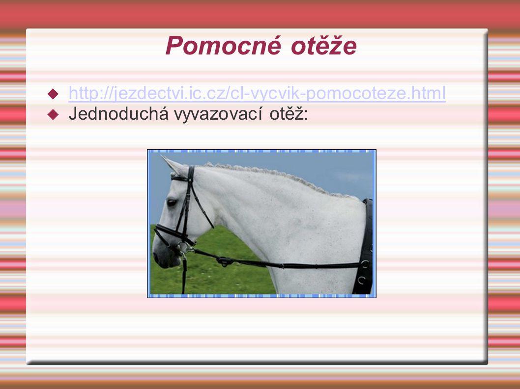 Pomocné otěže  http://jezdectvi.ic.cz/cl-vycvik-pomocoteze.html http://jezdectvi.ic.cz/cl-vycvik-pomocoteze.html  Jednoduchá vyvazovací otěž: