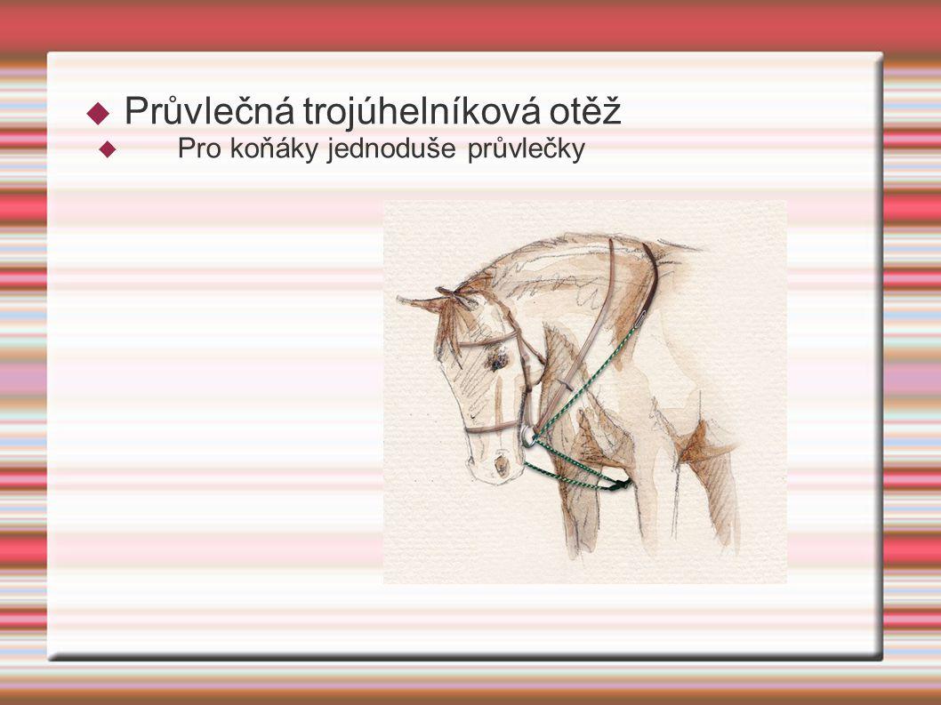  Průvlečná trojúhelníková otěž  Pro koňáky jednoduše průvlečky