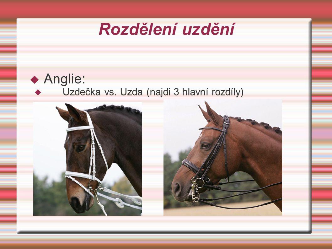 Odpověď  Uzdečka má dvě lícnice k jednomu udidlu a jedny oteže  Uzda má čtyři lícnice vedoucí ke dvěma udidlům (stihlové a pákové) a otěže vedoucí z každého udidla (takže ano, opravdu má jezdec v ruce dvoje otěže a s obojema řídí koně)