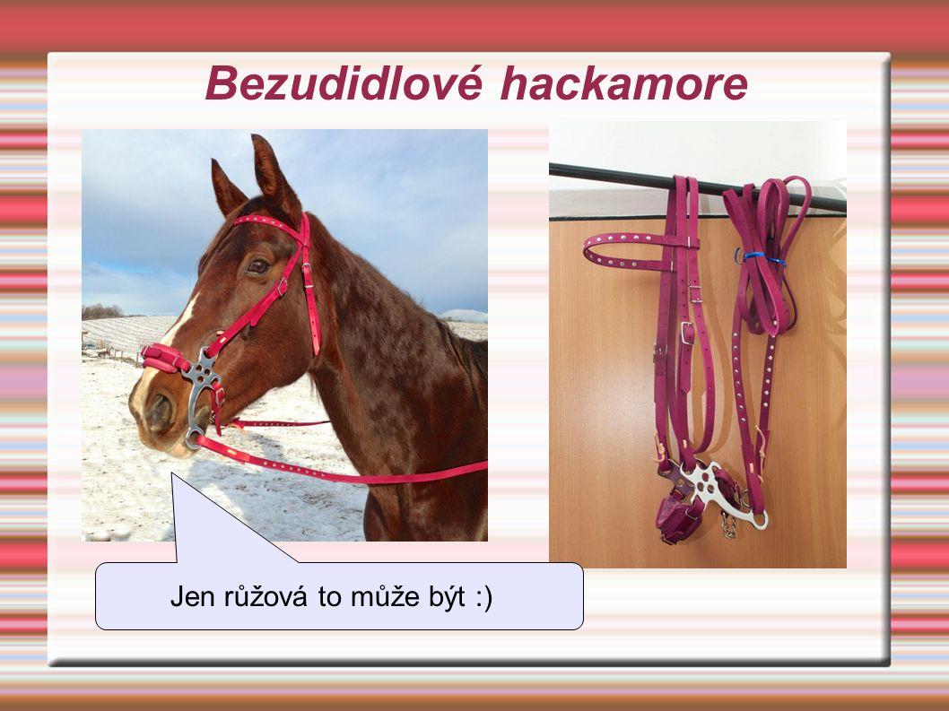 Bezudidlové hackamore Jen růžová to může být :)