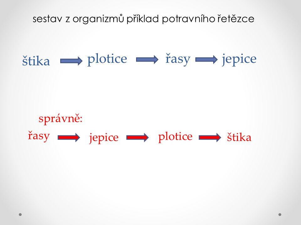 sestav z organizmů příklad potravního řetězce štika ploticeřasyjepice správně: řasy jepice plotice štika