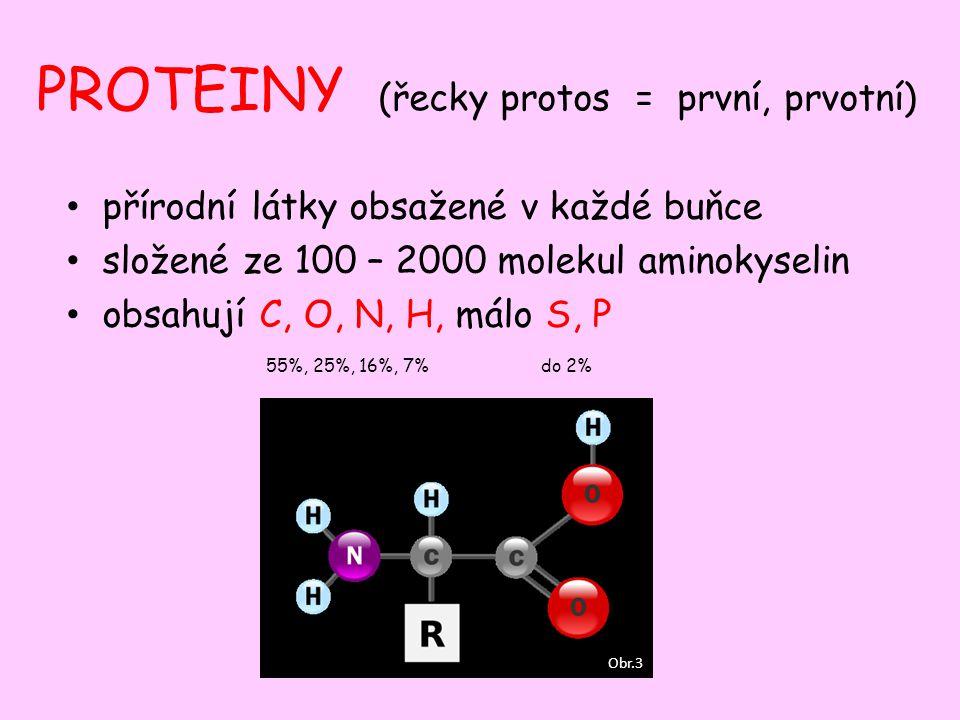 PROTEINY (řecky protos = první, prvotní) přírodní látky obsažené v každé buňce složené ze 100 – 2000 molekul aminokyselin obsahují C, O, N, H, málo S,