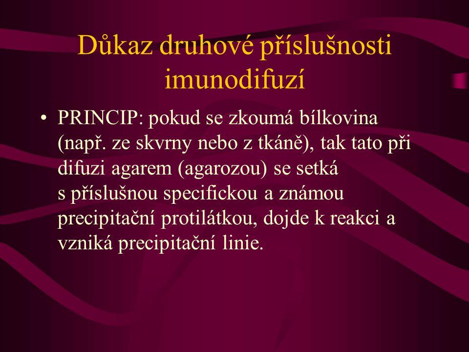 Důkaz druhové příslušnosti imunodifuzí PRINCIP: pokud se zkoumá bílkovina (např.