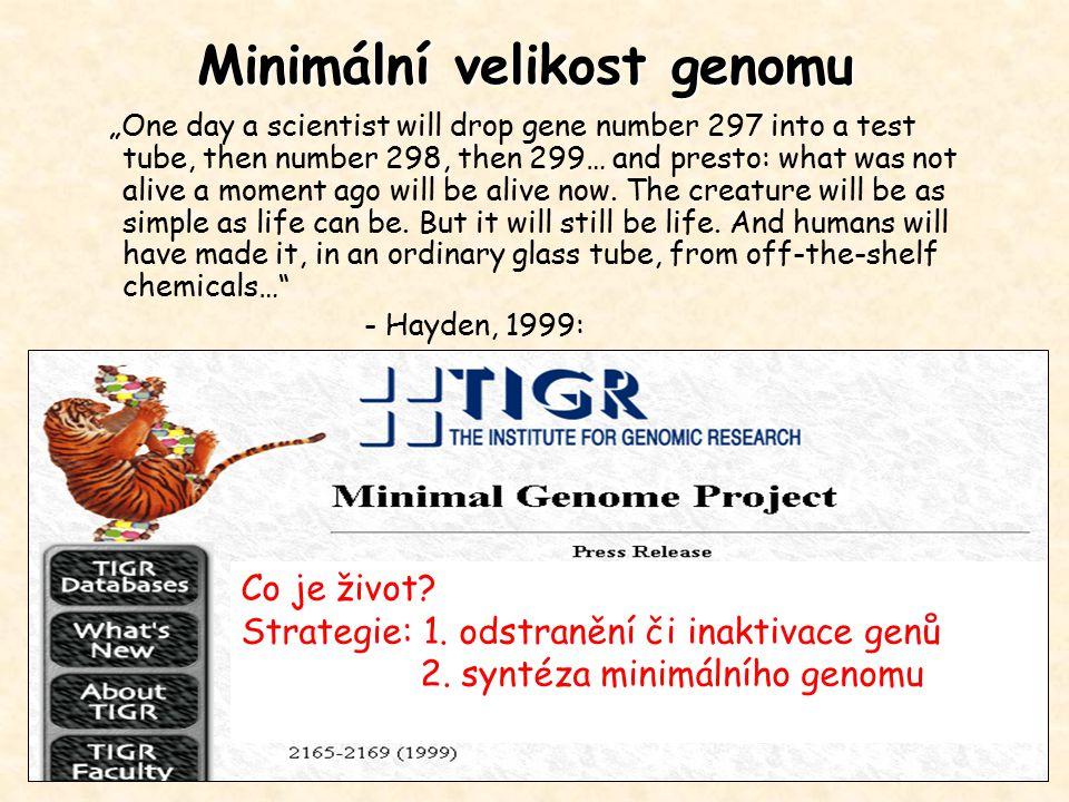 """Minimální velikost genomu Co je život? Strategie: 1. odstranění či inaktivace genů 2. syntéza minimálního genomu """"One day a scientist will drop gene n"""
