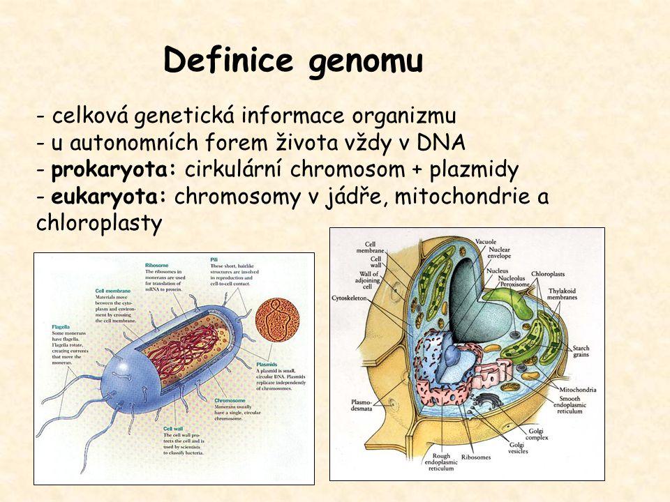 Definice genomu - celková genetická informace organizmu - u autonomních forem života vždy v DNA - prokaryota: cirkulární chromosom + plazmidy - eukary