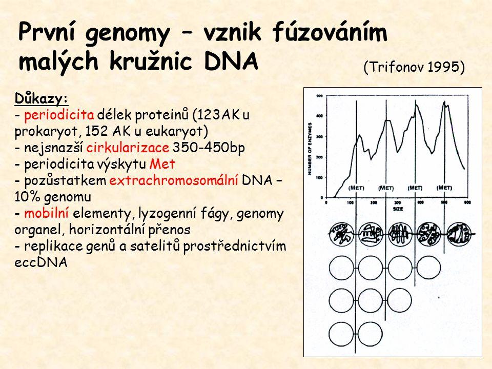 První genomy – vznik fúzováním malých kružnic DNA Důkazy: - periodicita délek proteinů (123AK u prokaryot, 152 AK u eukaryot) - nejsnazší cirkularizac