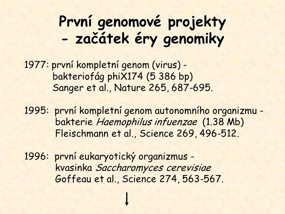 První genomové projekty - začátek éry genomiky 1977: první kompletní genom (virus) - bakteriofág phiX174 (5 386 bp) Sanger et al., Nature 265, 687-695