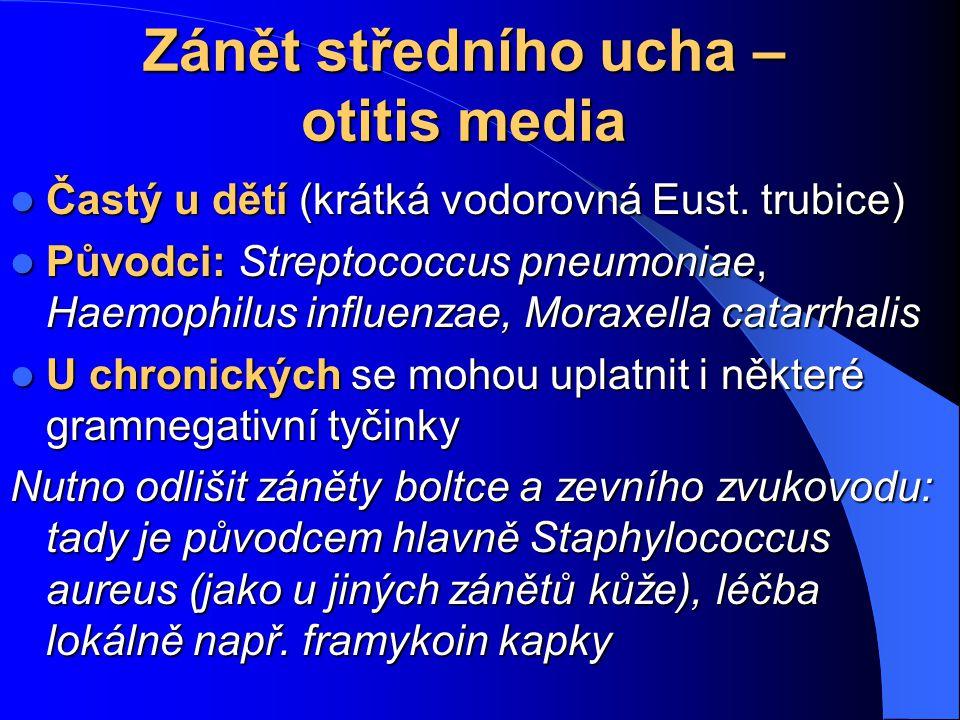 Zánět středního ucha – otitis media Častý u dětí (krátká vodorovná Eust. trubice) Častý u dětí (krátká vodorovná Eust. trubice) Původci: Streptococcus