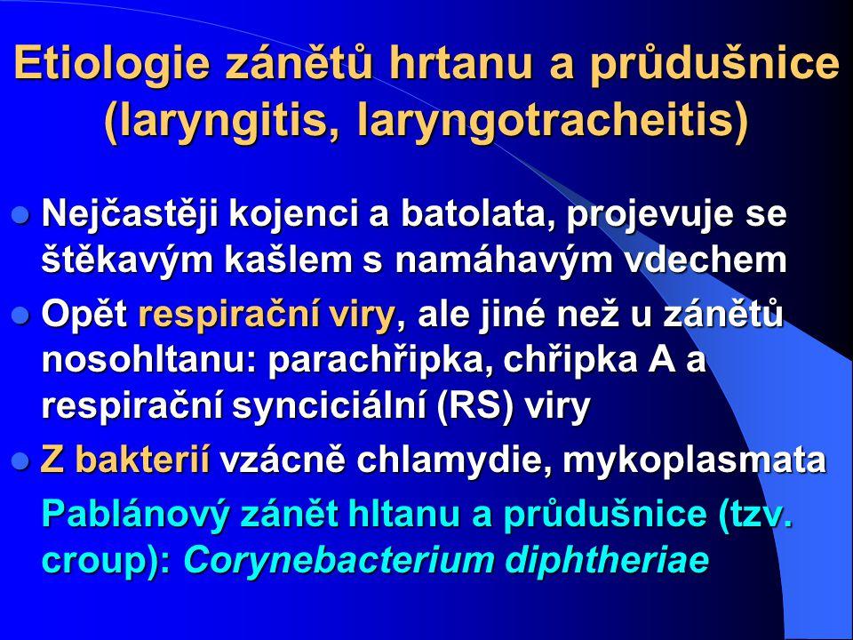 Etiologie zánětů hrtanu a průdušnice (laryngitis, laryngotracheitis) Nejčastěji kojenci a batolata, projevuje se štěkavým kašlem s namáhavým vdechem N