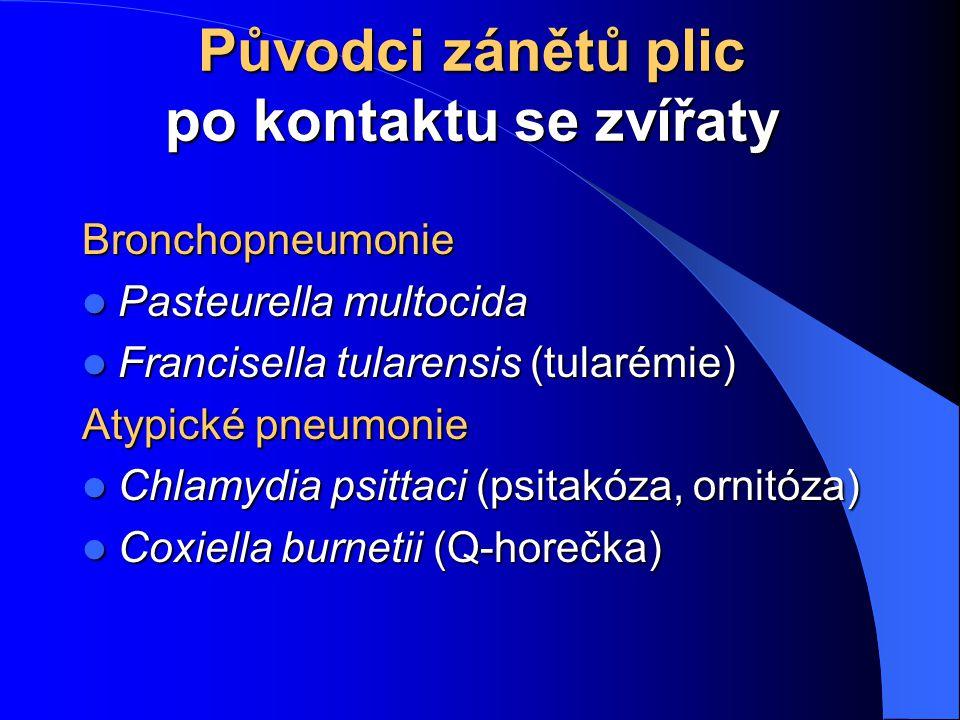 Původci zánětů plic po kontaktu se zvířaty Bronchopneumonie Pasteurella multocida Pasteurella multocida Francisella tularensis (tularémie) Francisella