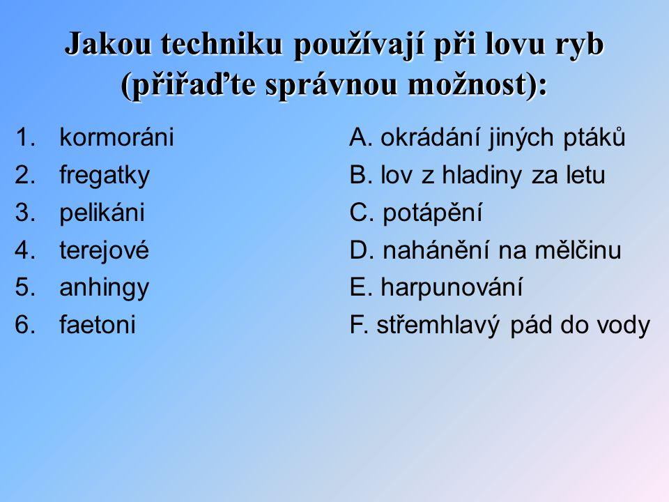 Řešení: 1 – C 2 – A 3 – D 4 – F 5 – E 6 – B