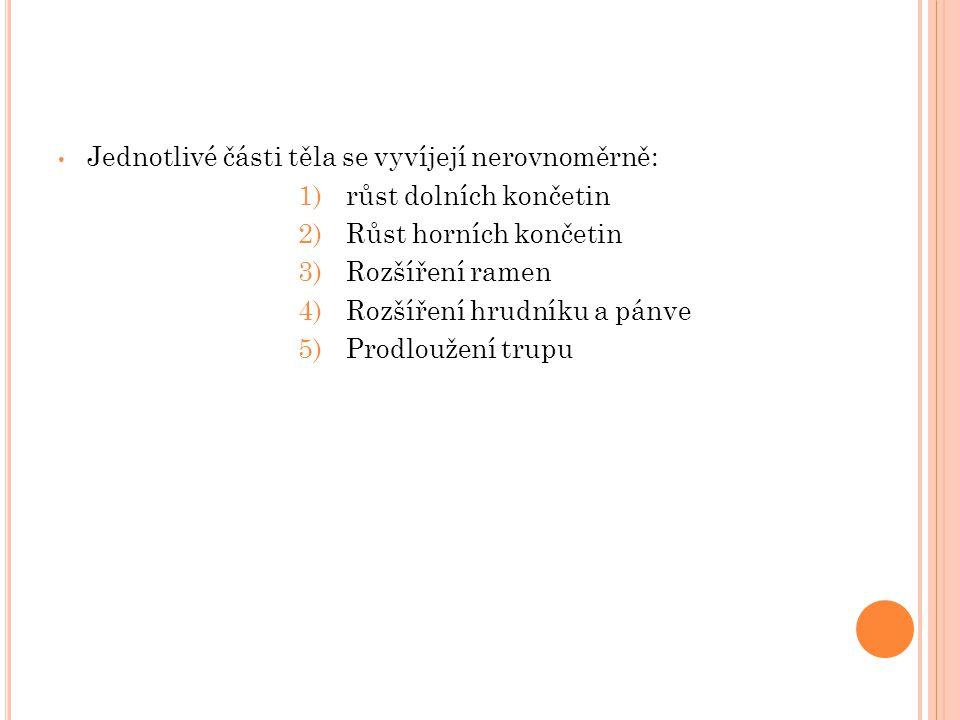 Jednotlivé části těla se vyvíjejí nerovnoměrně: 1)růst dolních končetin 2)Růst horních končetin 3)Rozšíření ramen 4)Rozšíření hrudníku a pánve 5)Prodl