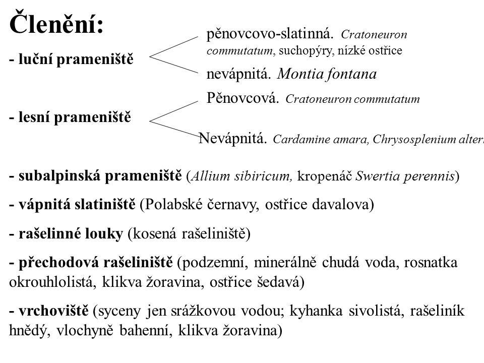 Členění: - luční prameniště - lesní prameniště - subalpinská prameniště (Allium sibiricum, kropenáč Swertia perennis) - vápnitá slatiniště (Polabské č