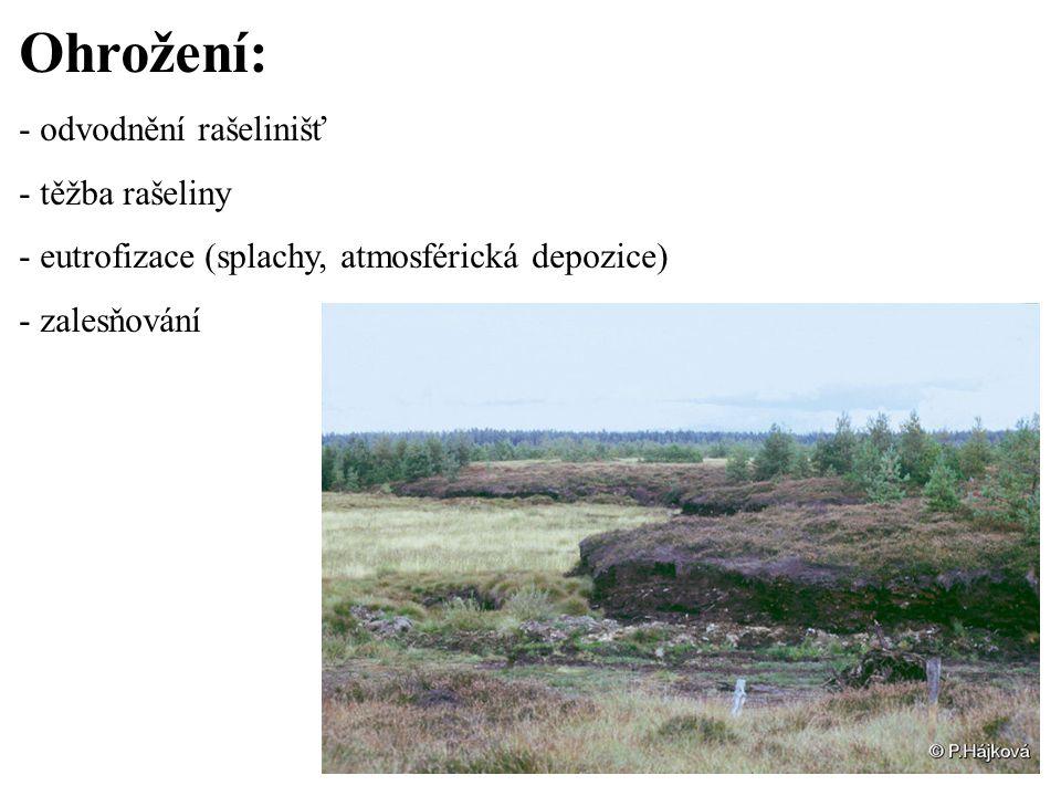 Ohrožení: - odvodnění rašelinišť - těžba rašeliny - eutrofizace (splachy, atmosférická depozice) - zalesňování