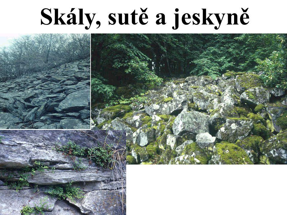 Skály, sutě a jeskyně