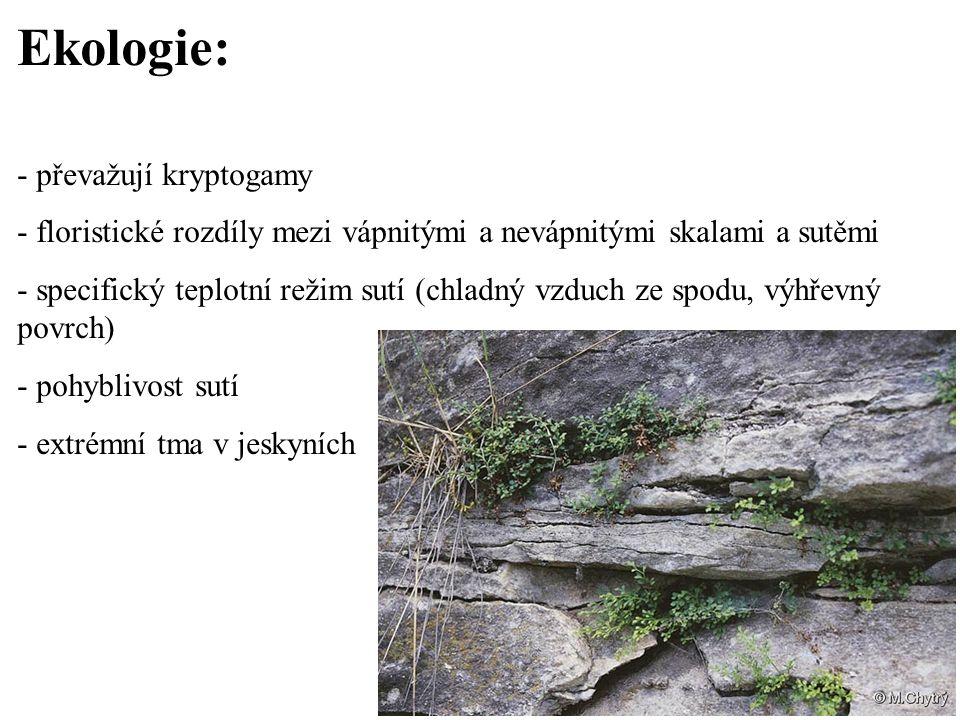 Ekologie: - převažují kryptogamy - floristické rozdíly mezi vápnitými a nevápnitými skalami a sutěmi - specifický teplotní režim sutí (chladný vzduch
