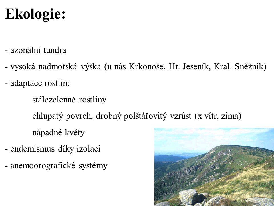 Ekologie: - azonální tundra - vysoká nadmořská výška (u nás Krkonoše, Hr. Jeseník, Kral. Sněžník) - adaptace rostlin: stálezelenné rostliny chlupatý p