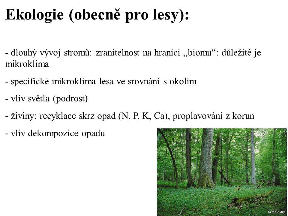 """Ekologie (obecně pro lesy): - dlouhý vývoj stromů: zranitelnost na hranici """"biomu"""": důležité je mikroklima - specifické mikroklima lesa ve srovnání s"""