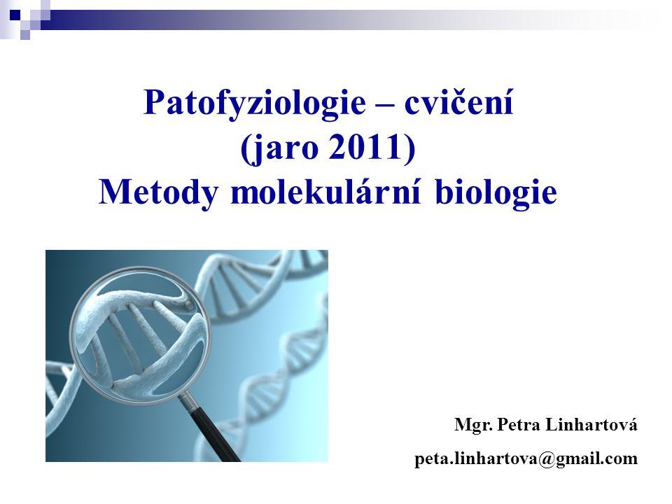 Patofyziologie – cvičení (jaro 2011) Metody molekulární biologie Mgr. Petra Linhartová peta.linhartova@gmail.com