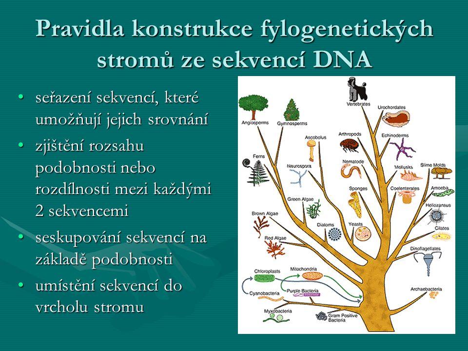 Pravidla konstrukce fylogenetických stromů ze sekvencí DNA seřazení sekvencí, které umožňují jejich srovnáníseřazení sekvencí, které umožňují jejich s