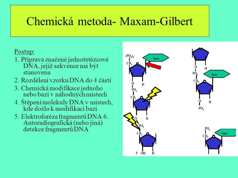 Postup: 1. Příprava značené jednořetězcové DNA, jejíž sekvence má být stanovena 2. Rozdělení vzorku DNA do 4 částí 3. Chemická modifikace jednoho nebo