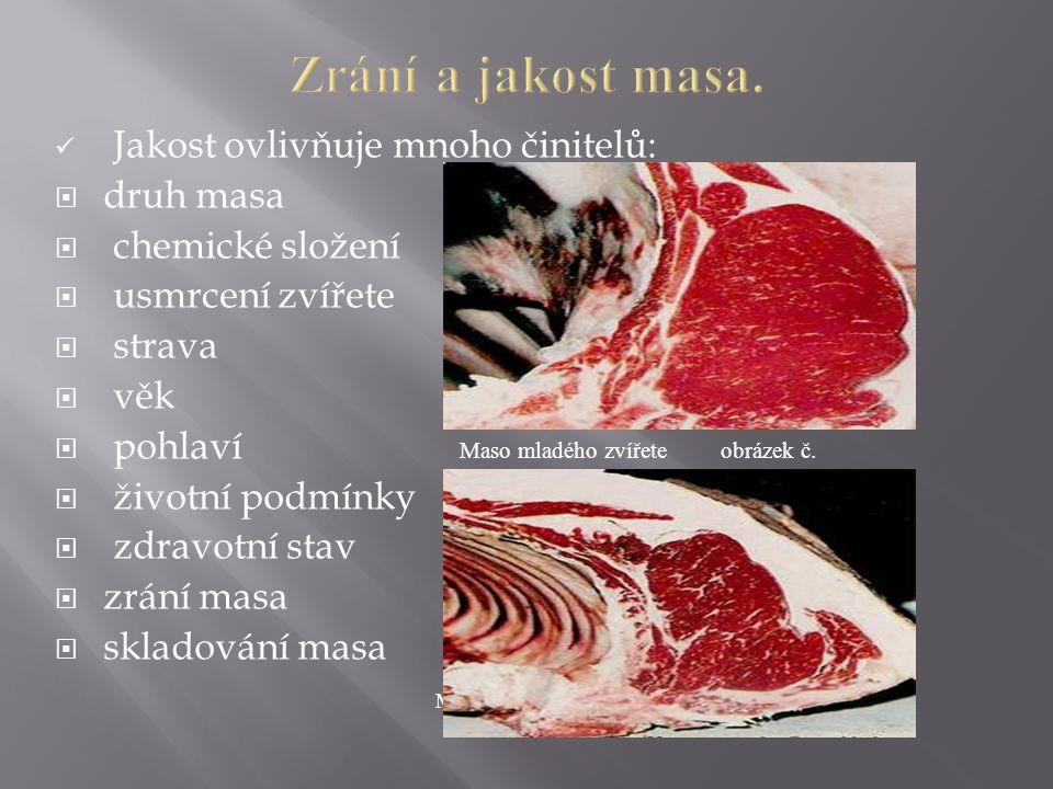 Jakost ovlivňuje mnoho činitelů:  druh masa  chemické složení  usmrcení zvířete  strava  věk  pohlaví Maso mladého zvířete obrázek č.  životní