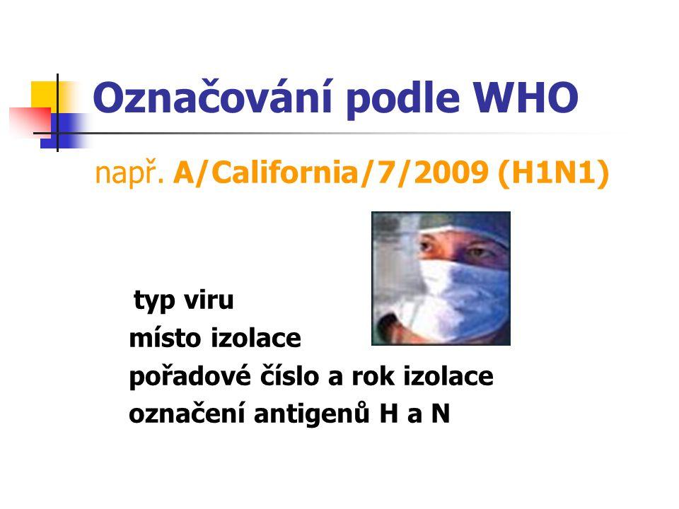Označování podle WHO např. A/California/7/2009 (H1N1) typ viru místo izolace pořadové číslo a rok izolace označení antigenů H a N