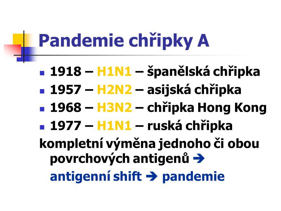Pandemie chřipky A 1918 – H1N1 – španělská chřipka 1957 – H2N2 – asijská chřipka 1968 – H3N2 – chřipka Hong Kong 1977 – H1N1 – ruská chřipka kompletní
