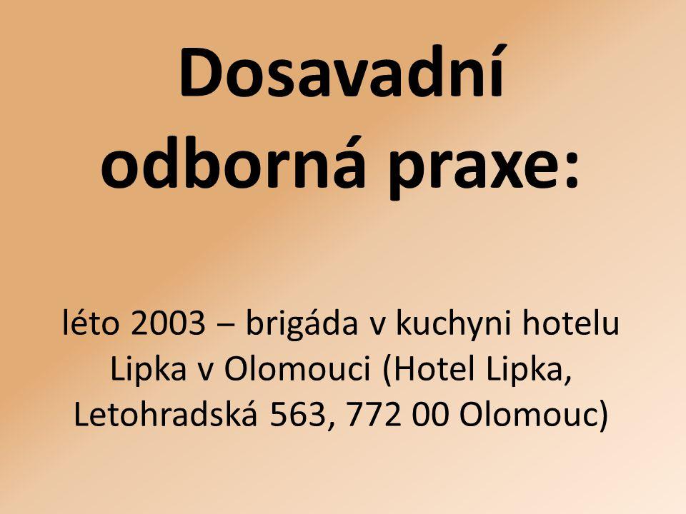 Dosavadní odborná praxe: léto 2003 ‒ brigáda v kuchyni hotelu Lipka v Olomouci (Hotel Lipka, Letohradská 563, 772 00 Olomouc)