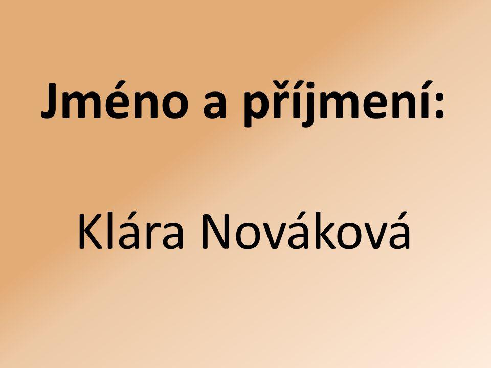 Jméno a příjmení: Klára Nováková
