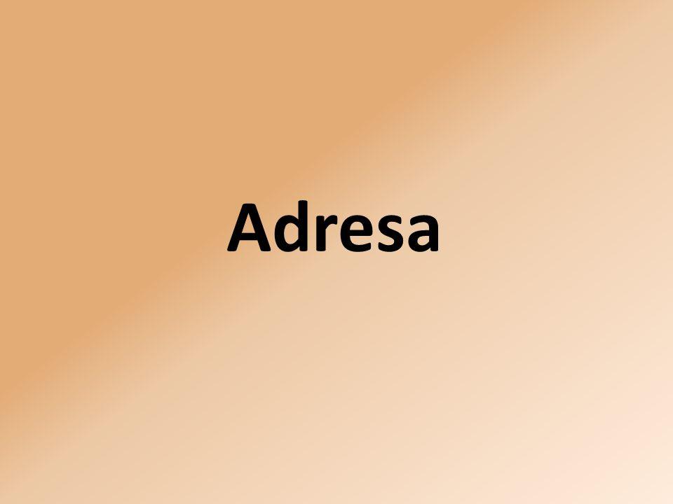Adresa: Nerudova 25 772 00 Olomouc