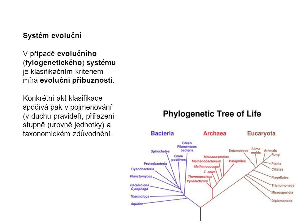 Systém evoluční V případě evolučního (fylogenetického) systému je klasifikačním kriteriem míra evoluční příbuznosti. Konkrétní akt klasifikace spočívá