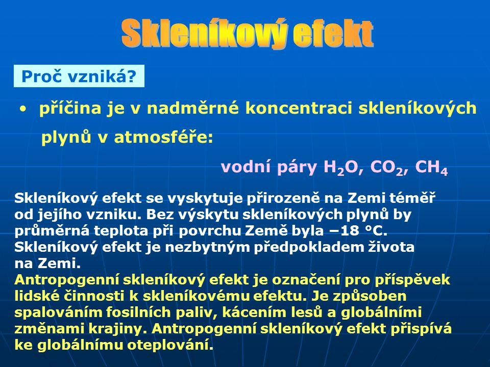 PLYNPŘIROZENÉZDROJEUMĚLÉZDROJE CO 2 dýchání organismů dýchání organismů rozklad org.