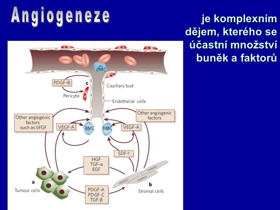 je komplexním dějem, kterého se účastní množství buněk a faktorů
